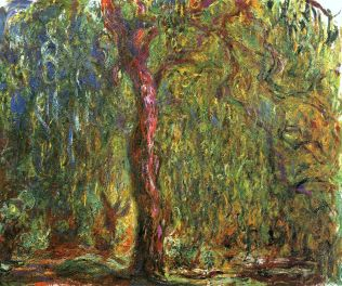 weeping-willow-4-1919.jpg